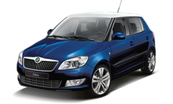 mandataire auto skoda fabia. Black Bedroom Furniture Sets. Home Design Ideas